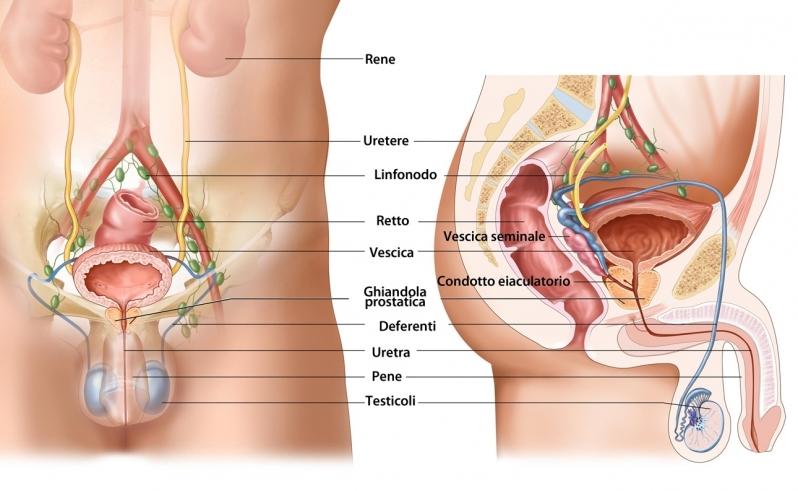Onde Encontro Clínica Urológica na Cidade Tiradentes - Clínica de Urologia em São Paulo